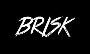 Brisk Font